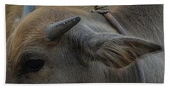 Beach Towel featuring the photograph  Young Buffalo by Michelle Meenawong