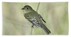 Acadian Flycatcher Beach Sheet by Anthony Mercieca