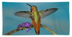 Allens Hummingbird Male Beach Towel