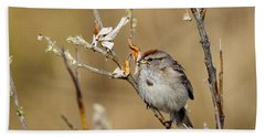 American Tree Sparrow Beach Towel