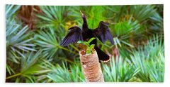 Anhinga Beach Towels