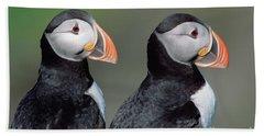 Atlantic Puffins In Breeding Colors Beach Sheet by Yva Momatiuk and John Eastcott