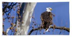 Bald Eagle 2 Beach Sheet