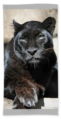 Black Leopard Beach Towel by Savannah Gibbs