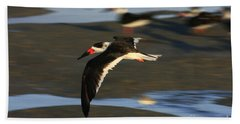 Black Skimmer Beach Beach Sheet