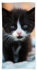 Black And White Kitten Beach Towel