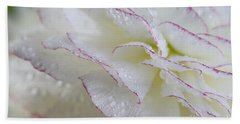 Buttercup Flower With Dew Beach Towel