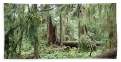 Beach Sheet featuring the photograph Cathedral Grove by Marilyn Wilson