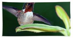 Close-up Of A Scintillant Hummingbird Beach Towel