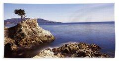Cypress Tree At The Coast, The Lone Beach Towel
