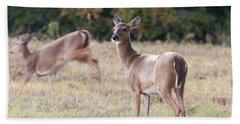 Beach Towel featuring the photograph Deer At Paynes Prairie by Paul Rebmann