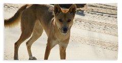 Dingo Beach Sheet by Carol Ailles