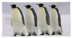 Emperor Penguins Walking Antarctica Beach Sheet by Frederique Olivier