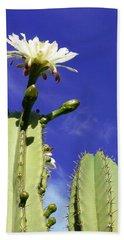 Flowering Cactus 2 Beach Sheet