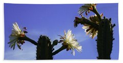 Flowering Cactus 4 Beach Sheet
