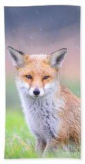 Fox Beach Sheet
