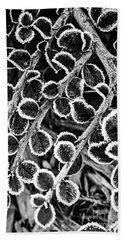 Frosty Plants  Beach Towel