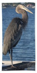 Great Blue Heron  Beach Towel by Christiane Schulze Art And Photography