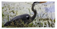 Great Blue Heron Beach Sheet by Fran Gallogly