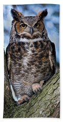 Great Horned Owl Beach Towel by Dale Kincaid