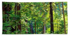 Hoh Rain Forest Beach Towel