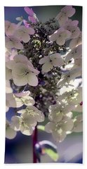 Hydrangea  Beach Sheet by Debra Forand
