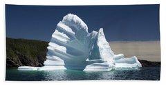Beach Towel featuring the photograph Iceberg by Liz Leyden