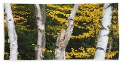 Kancamagus Highway - White Mountains New Hampshire Beach Towel