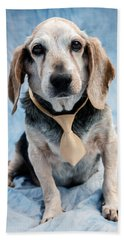 Kippy Beagle Senior Beach Towel