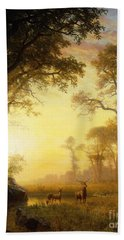 Light In The Forest Beach Towel