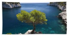 Beach Towel featuring the photograph Lone Pine Tree by Brian Jannsen