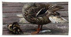 Mama Duck And Ducklings Beach Sheet by Pamela Walton