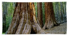 Mariposa Grove Beach Towel