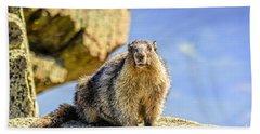 Marmot On The Mountain Beach Towel