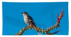 Northern Mockingbird Beach Towel by Robert Bales