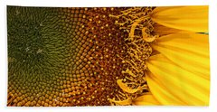 O Sunflower Beach Towel by Jeanette French