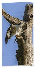Osprey Pose Beach Towel