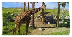 Beach Towel featuring the photograph Reticulated Giraffe by Chris Tarpening
