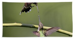 Ruby-throated Hummingbird Beach Sheet