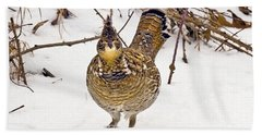 Ruffed Grouse Walking On Snow - Horizontal Beach Towel