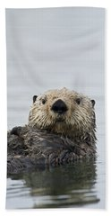 Beach Towel featuring the photograph Sea Otter Alaska by Michael Quinton