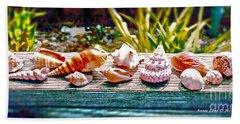 Shell Collection Beach Sheet