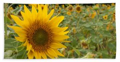 Sun Flower Fields Beach Sheet by Miguel Winterpacht