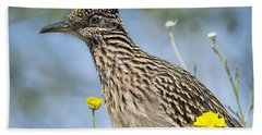 The Greater Roadrunner  Beach Towel by Saija  Lehtonen