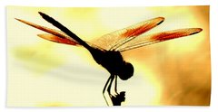The Light Of Flight Upon The Mosquito Hawk At The Mississippi River In New Orleans Louisiana Beach Towel