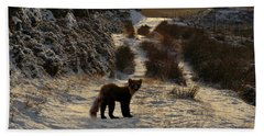 The Pine Marten's Path Beach Towel