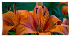 Tiger Lily Beach Sheet