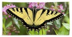 Tiger Swallowtail Butterfly On Milkweed Flowers Beach Sheet
