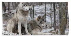 Timber Wolf Pair In Forest Beach Towel