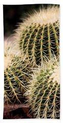 Triple Cactus Beach Sheet
